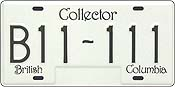 ICBC Collector Plate
